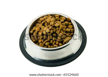 cat's forage - stock photo