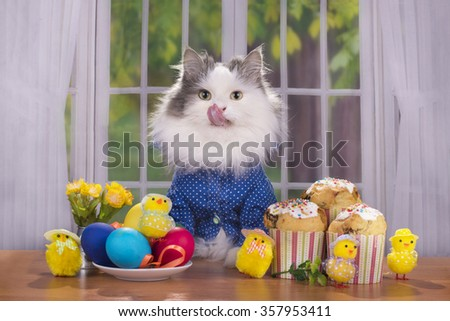 cat shirt greets guests at Easter