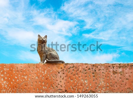 Cat statue with blue sky background - stock photo