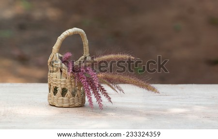 Cat tail  in small basket - stock photo