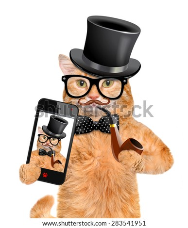 Cat taking a selfie with a smartphone. - stock photo