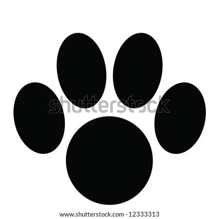 Cat track - stock photo