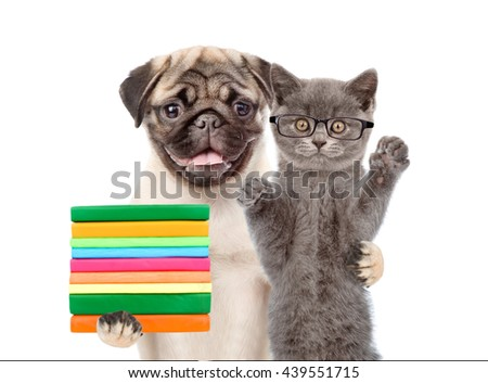 Cat wearing glasses and dog holding books together. isolated on white background - stock photo