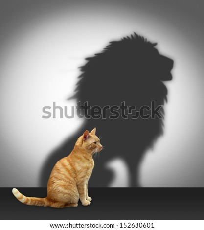 Cat with lion shadow - stock photo
