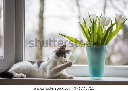 cat with tulips - stock photo