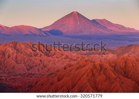 Catarpe, Licancabur volcano, Atacama desert, Chile - stock photo