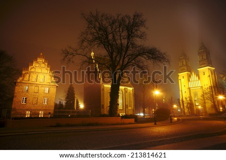 Cathedral of Saints Peter and Paul in Poznan in the fog, Poland