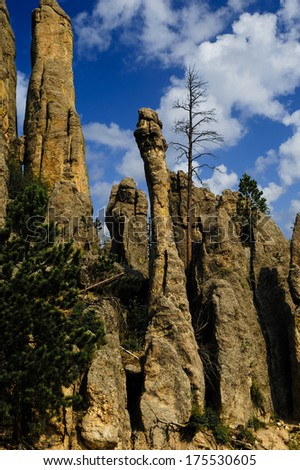 Cathedral Spires at Custer State Park South Dakota - stock photo