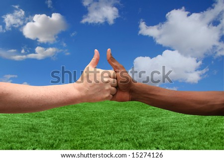 Caucasian and African American Thumbs Up Agreement on Landscape Background - stock photo