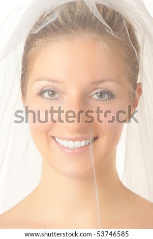 Caucasian blonde bride in veil - stock photo