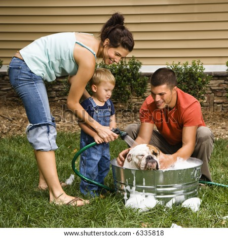 Caucasian family with toddler son washing English Bulldog in backyard. - stock photo