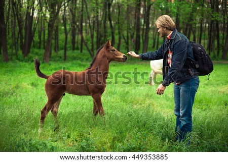 Caucasian man playing with brown foal horizontal green grass. Image toned