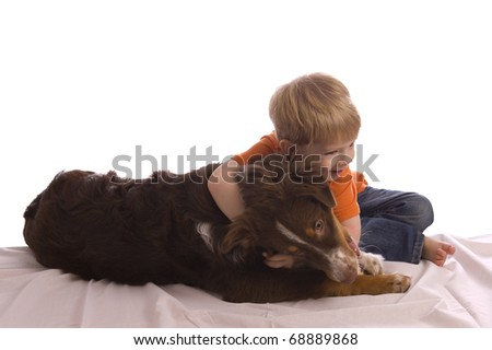 Caucasian toddler hugging his brown Australian shepherd puppy laying on a white bed sheet. Isolated on white, both model released. - stock photo