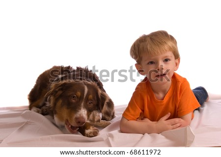 Caucasian toddler posing with his brown Australian Shepherd puppy. Isolated on white, both model released. - stock photo