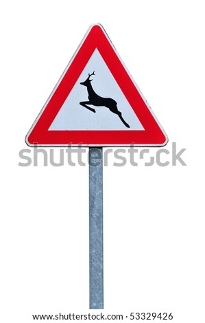 Caution wild animals road sign isolated on white