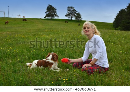 Cavalier King Charles Spaniel Blenheim dog playing with her best friend on spring meadow