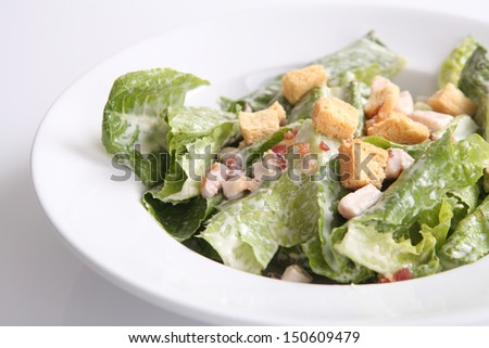 ceacar salad isolated in white background