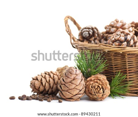 Cedar cones and basket on a white background - stock photo