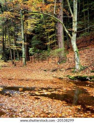 Cedar Falls Creek, Hocking Hills Region, Ohio - stock photo