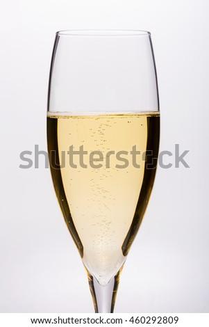 Celebration Champagne glass - stock photo