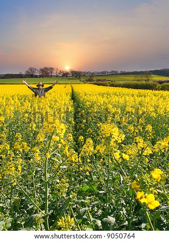 Celebration of Nature as sun rises Man throws up his hands in joy of a fine new Day and a Healthy crop, Farm on the Hillside in background - stock photo