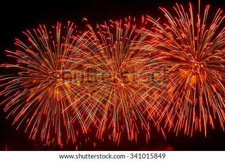 Celebratory colorful bright firework in a night sky