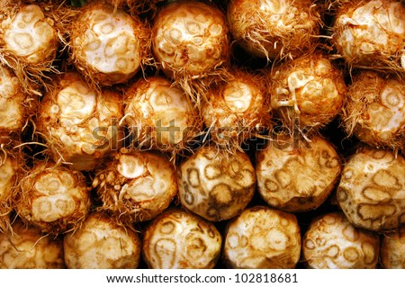 Celeriac , turnip-rooted celery, root vegetables on display in a food market - stock photo