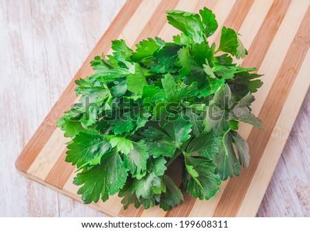 celery leaves - stock photo