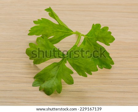 Celery leaves on the board - stock photo