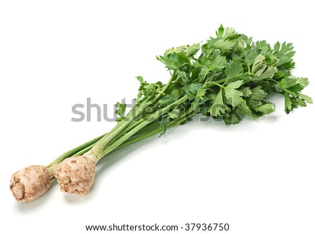 Celery vegetable with ripe root on white