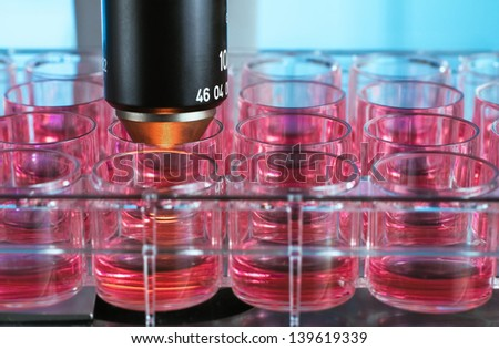 cell culture plate in the microscope - stock photo