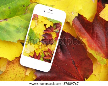 Cell phone on the colorful autumn leaves - stock photo