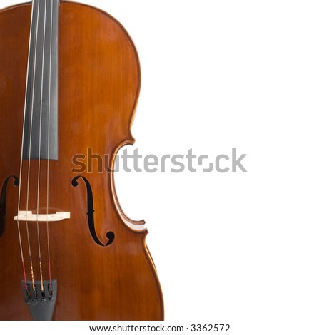 cello isolated on white background with a lot of copy space