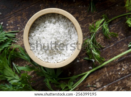 Celtic Sea Salt - stock photo