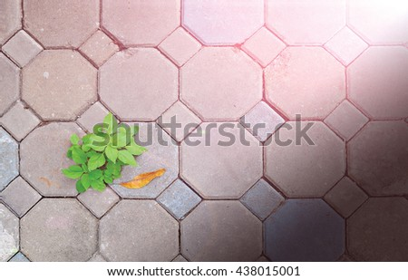 Cement block and weeds, with a light effect/ background - stock photo