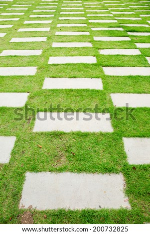 Cement footpath in green grass yard