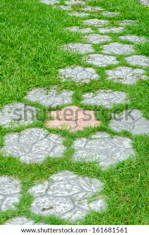 cement path on green grass in the garden