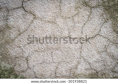 cement texture wall for background
