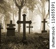 cemetary in fog in autumn - stock photo