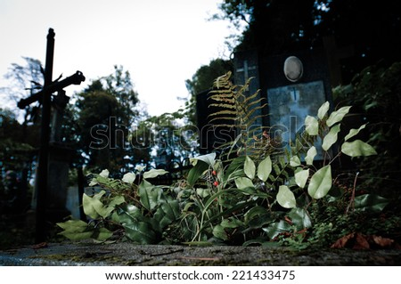 Cemetery and grave in twitlight - stock photo