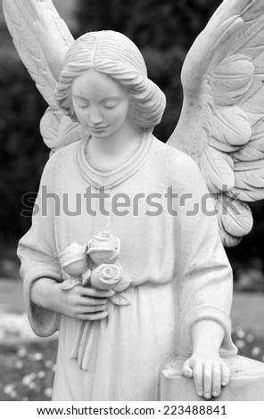 cemetery angel statue holding roses, Italy ,Europe - stock photo