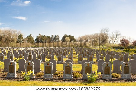 cemetery belgian soldiers world war one  - stock photo