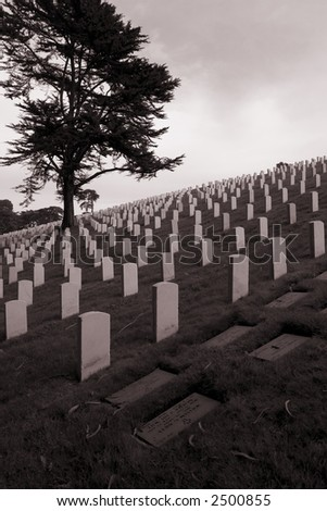 Cemetery on a Gray Day - stock photo