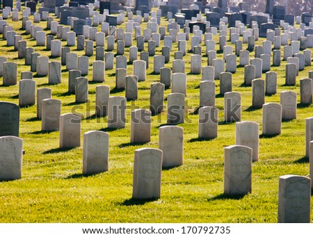 Cemetery Rows 4 - stock photo