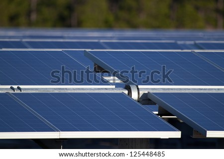 Central Florida power generation farm's solar panels point toward the early morning sun. The panels are mounted on moving racks, that follow the sun, maximizing solar collection capabilities. - stock photo