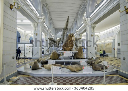 Central Hall at the Zoological Museum in St. Petersburg, Russia, September 26, 2013 - stock photo