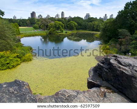 Central Park, a public green space and park in the heart of Manhattan in New York City - stock photo