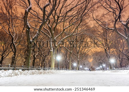 Central Park after the Snow Storm Linus in Manhattan, New York - stock photo