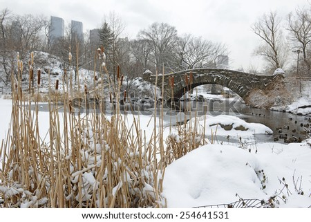 Central Park Bridge during snowstorm, Manhattan, New York