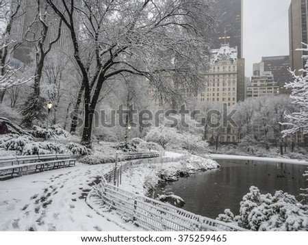 Central Park during a snow storm on Febuary 4th 2016 New York City,Manhattan photo shot in area near Gapstow bridge and 60th street in the morning - stock photo